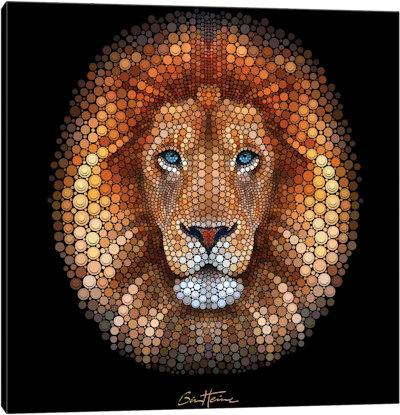 Lion - Canvas Print
