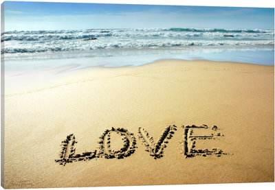 Love - Canvas Print