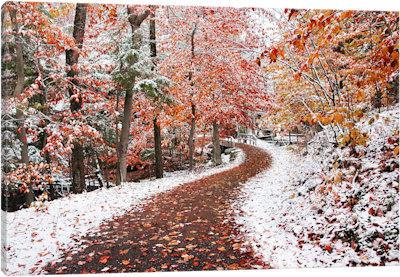 Two Seasons - Canvas Print